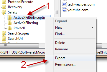 How do I export IE9's ActiveX filtering exceptions?