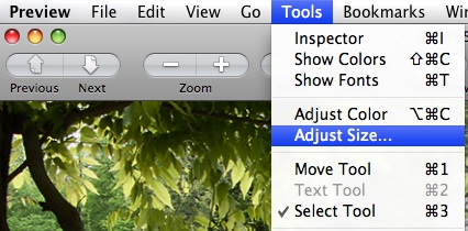 select adjust size