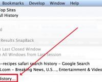 select Clear History from Safari's History menu