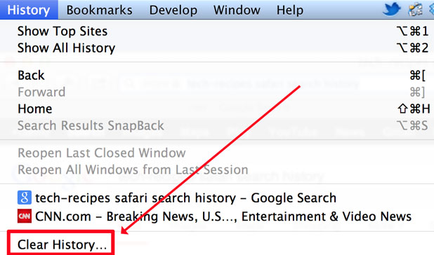 select Clear History from Safari's History menu