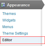 Wordpres Appearance Editor