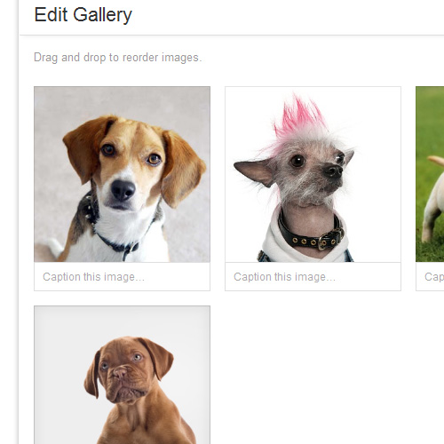 Wordpress 3.5 editing a gallery