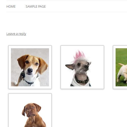 Wordpress 3.5 Gallery in a post