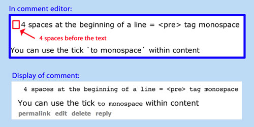 4 spaces or use the tick mark to monospace