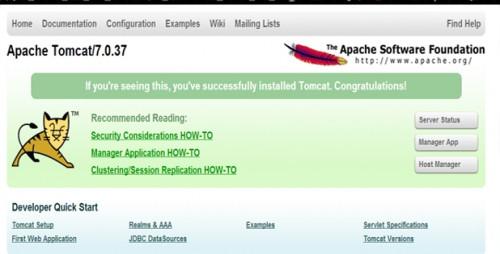 Apache Tomcat Success install