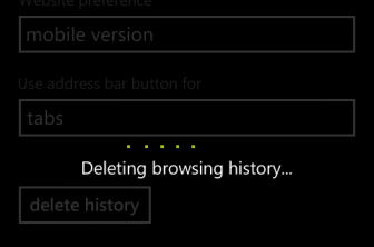 Delete IE browsing history