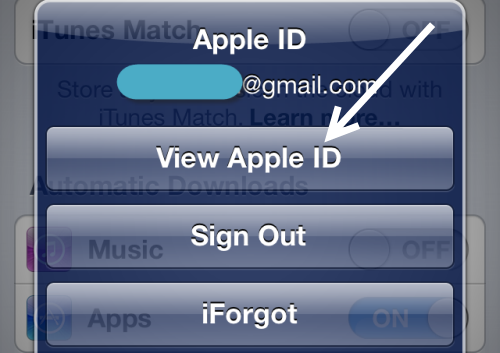 view Apple ID information