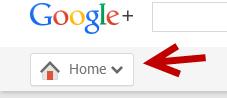 Google Plus Home