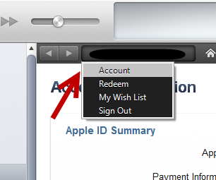 access account information in iTunes