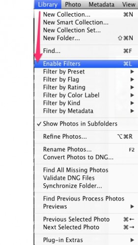 LR Enable Filters