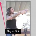 LR Flagging as Pick
