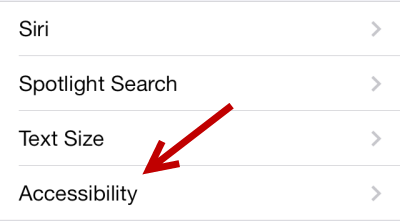 iOS Accessibility settings