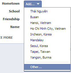 add custom Facebook search filter