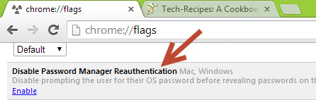 Google Chrome Password protector