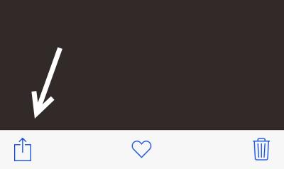 iOS Share