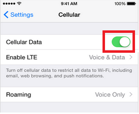 Cellular Data or Mobile Data switch on iPhone 6