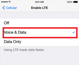 Enable LTE & Voice Data on iPhone 6