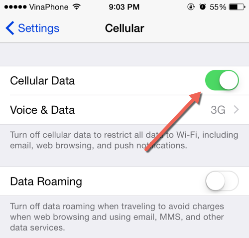 iOS Cellular Data Setting