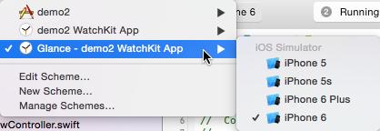 WatchKit app Glance scheme