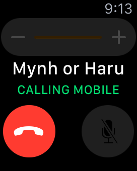 make a call on Apple Watch