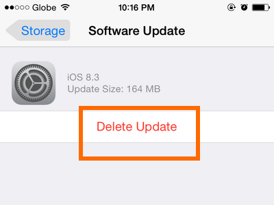 iPhone - Settings - General - Usage - Delete Update