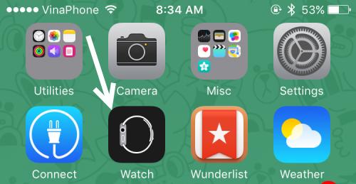iOS Watch app
