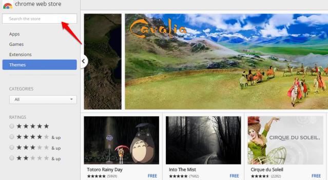 Chrome Themes