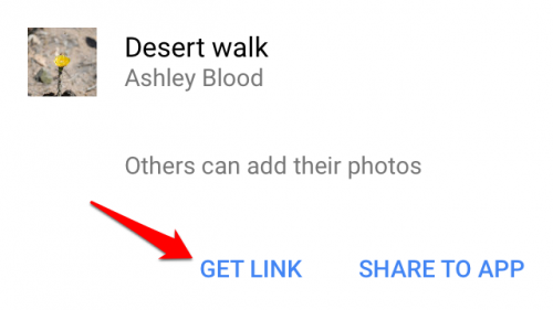 Google Photos Shared Album Get Link