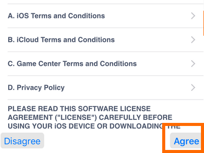 iPhone Settings - iCloud - Create a New Apple ID - Terms and conditions - Agree