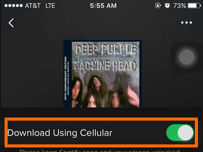 iPhone - Spotify - Settings - Streaming Quality - Download over Cellular - Enabled