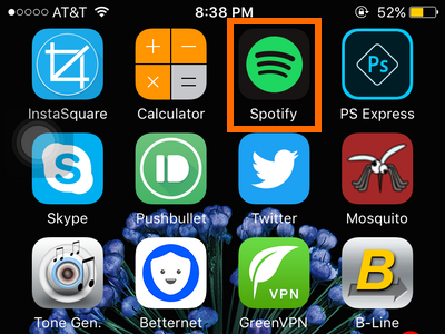 iPhone - Spotify icon
