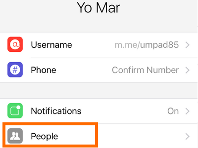 iPhone - Messenger - Messages - Me - People