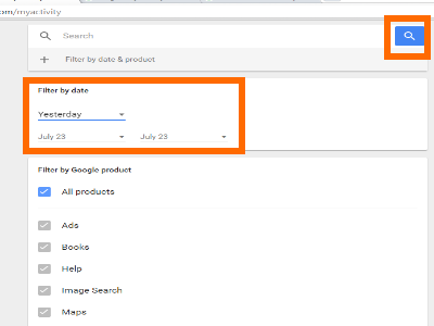 Google Activity Display Filter By Date Search