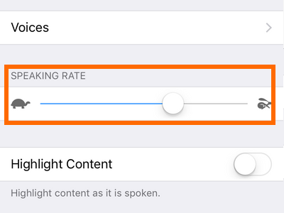 iphone settings Voices