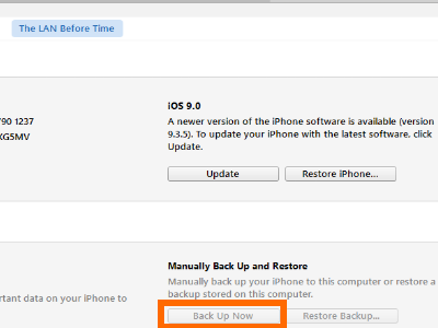 itunes-iphone-icon-summary-under-settings-iphone-details-backup-now
