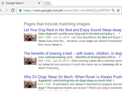 google-image-search-results