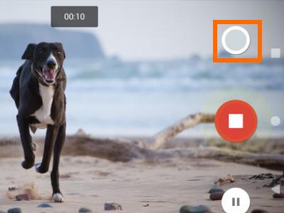 google-pixel-camera-app-button