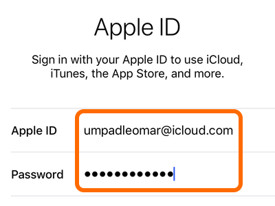 Enter Apple ID Username and Password
