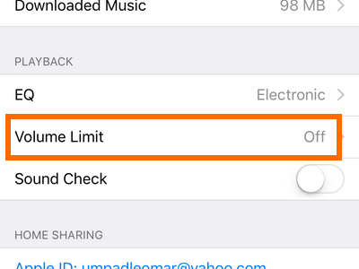 iPhone Settings Volume Limit