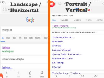 Google Search Results for Portrait and Landscape