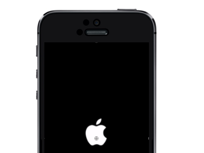 iPhone 5 Apple Logo
