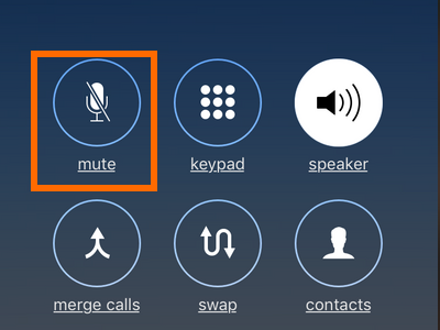 iPhone Conference Call Mute Button