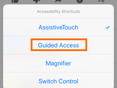 iPhone Guided Access option