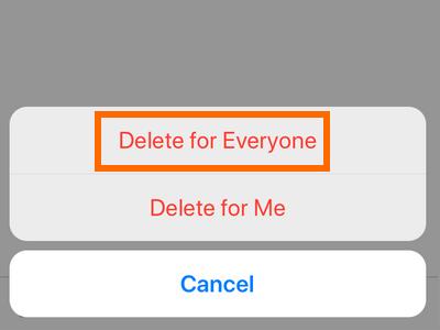 iPhone Whatsapp Delete for Everyone