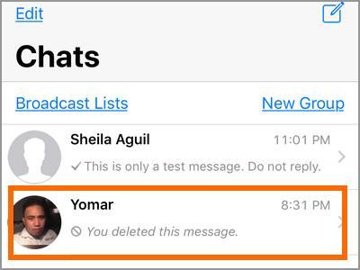 iPhone Whatsapp Select Conversation
