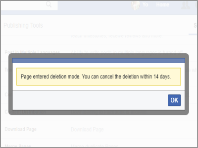Facebook Page Deletion Success