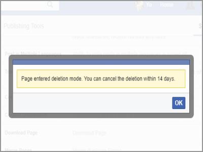 Facebook Page Deletion Success