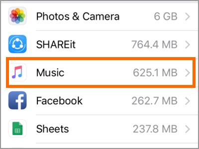 iPhone Settings General Storage App Music