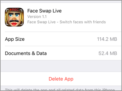 iPhone Settings General Storage App