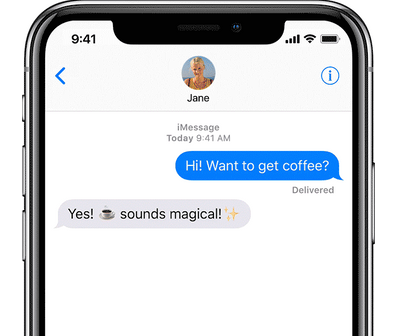iPhone X Message Conversation